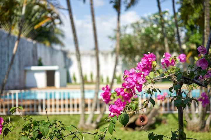 Amazing villa avec piscine et terrain de pétanque