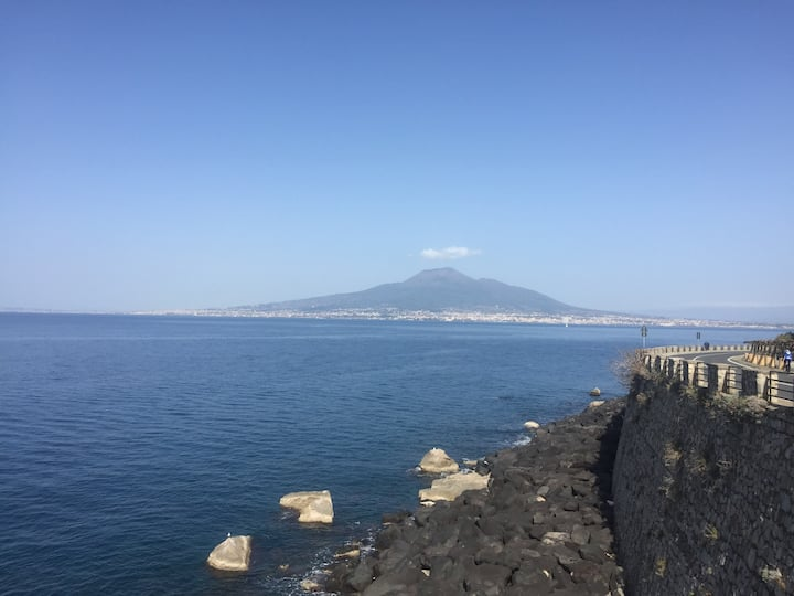 Sea View Apartment on the bay of Naples