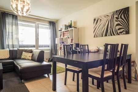 Sweet room in the city heart ! - Genève - Apartment
