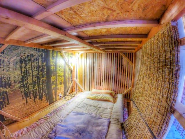 Artist in Residence JamHouse (Mixed Dorm 2)