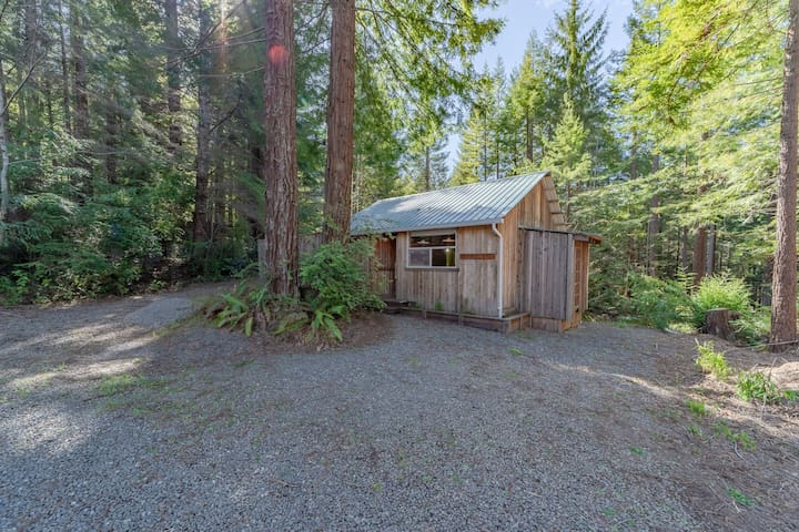 Rustic cabin w/deck, BBQ - beneath a canopy of redwood trees!