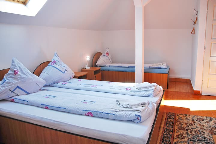 Pensiunea Dora, Room 3B