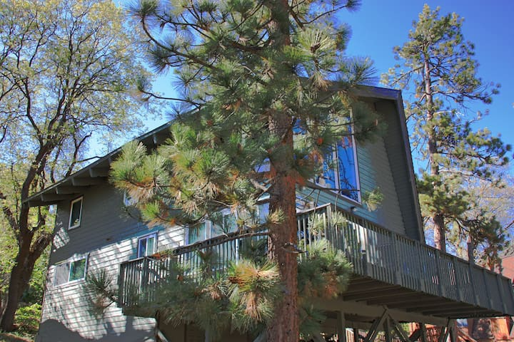 Quiet Forest Retreat, Walk to Big Bear Lake