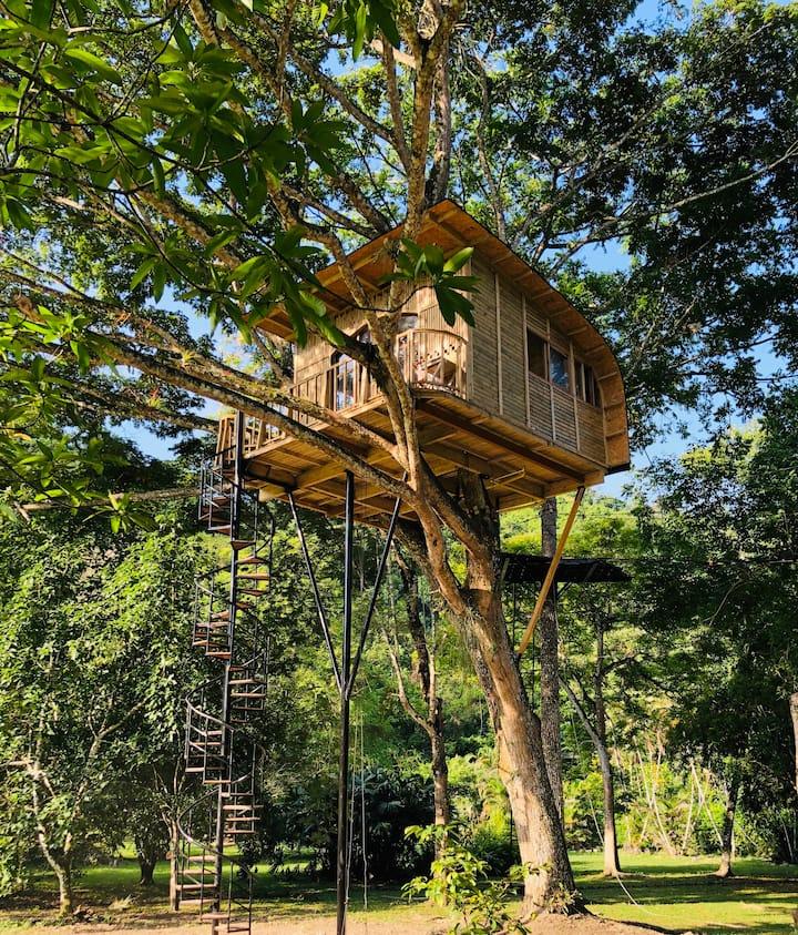 Casa del árbol en Tobia, un lugar único y mágico.