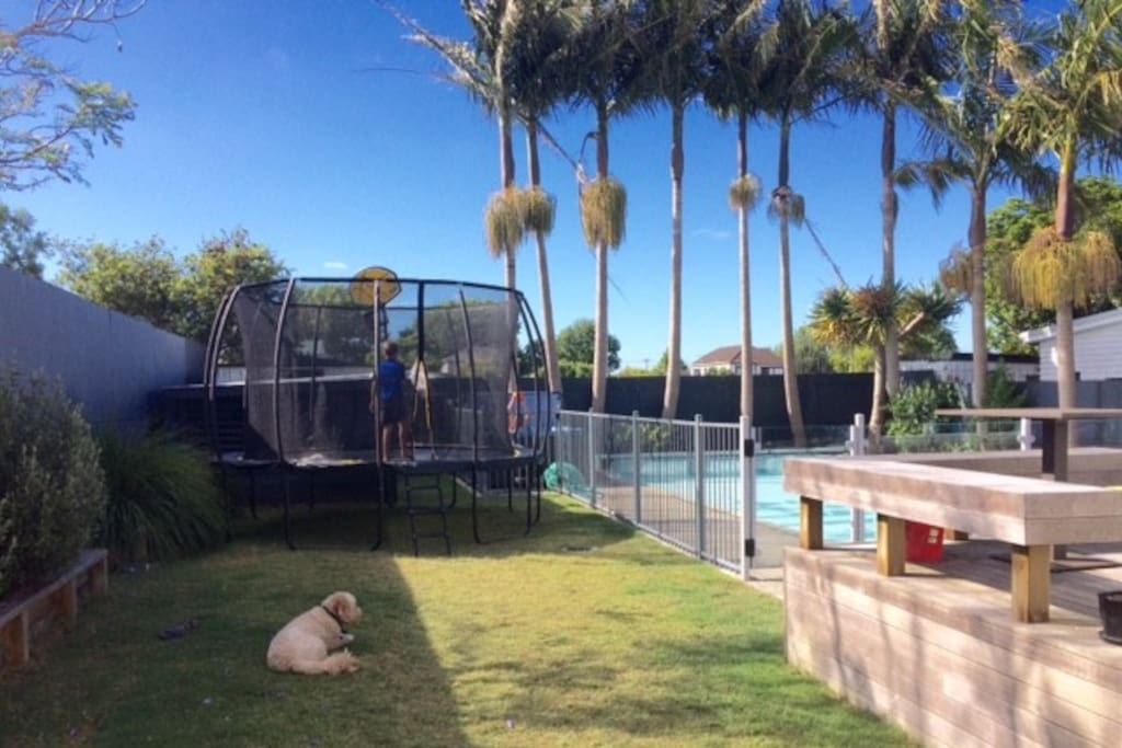 Trampoline, spa and pool