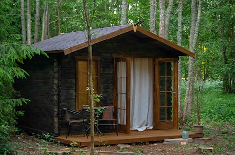 Tiny house in the middle of the forest