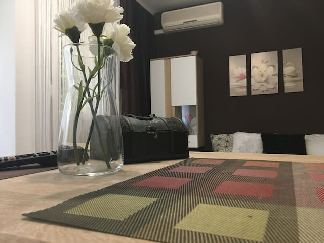 REoN Apartment No 8, Osijek