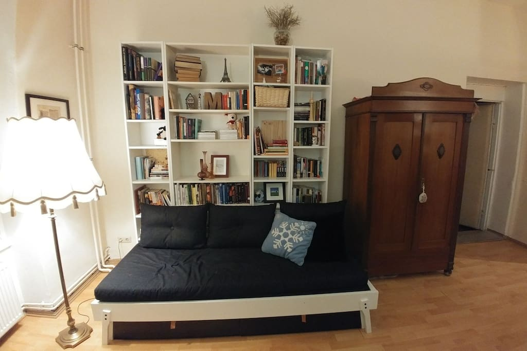 Living room and pull out couch
