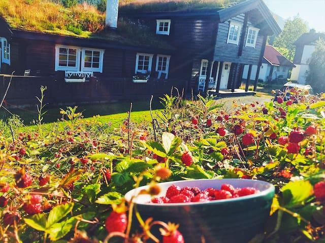 Villa i Isfjorden med fantastisk beliggenhet