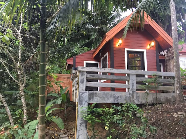 A greenery house by the creek - Muang - Hus
