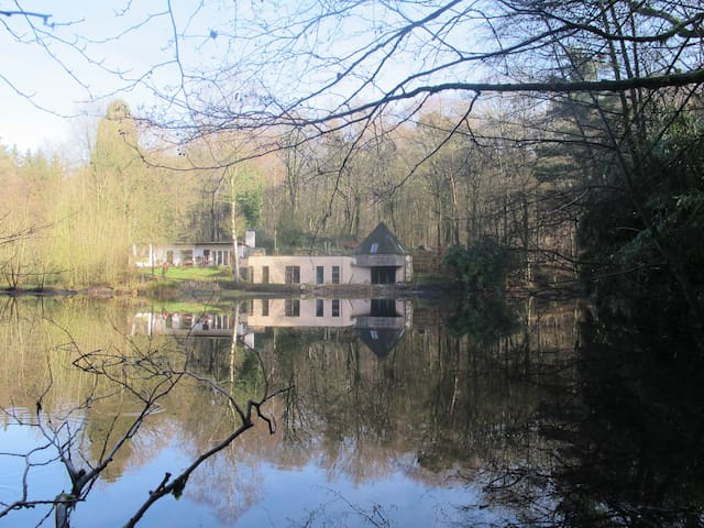 Maison d'architecte dans la forêt - Jurbise - House