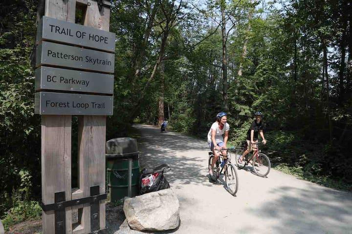 Burnaby Central Park  中央森林公园