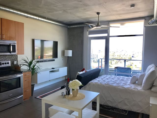 Luxurious Studio In DT San Diego !!