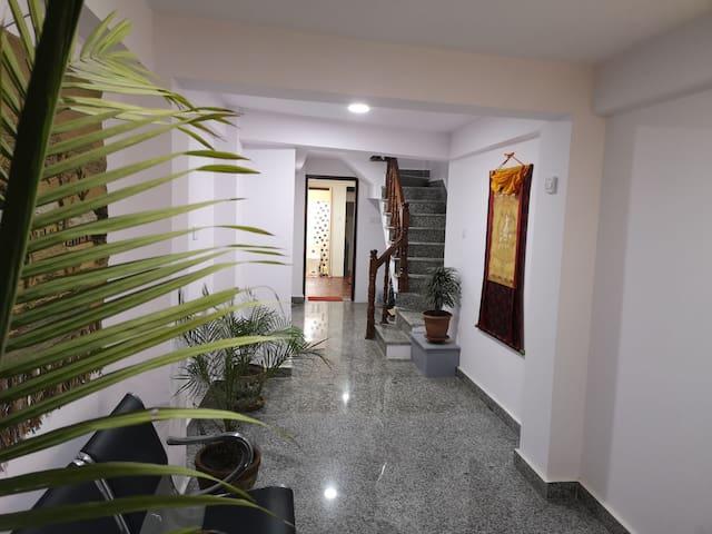 Studio at Naradevi Apart