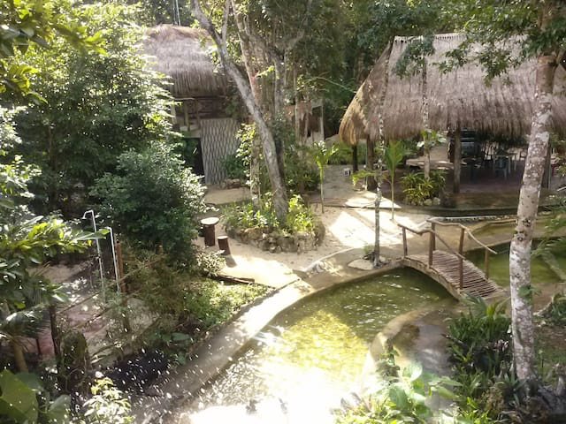 Glamping Los Jaguares: cabaña Tucan - Tulum - Hut