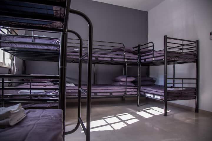 10 bed Mix Dormitory Room