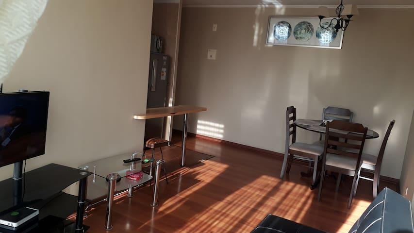 Lindo depto 3 dormitorios, Centro de Santiago