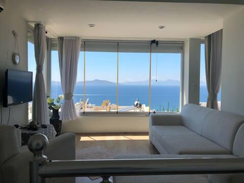 舒適的房子,可欣賞迷人的海景!