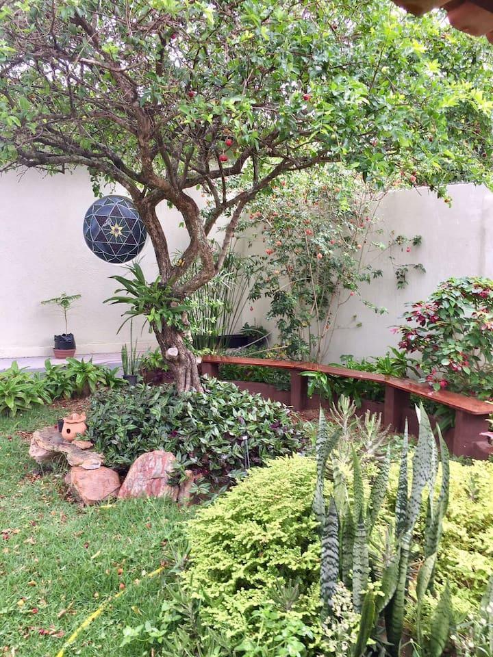 Jardim Compartilhado