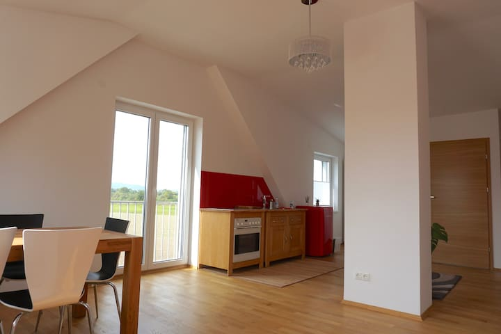 Lovely Flat in Southern Vienna in Green Enviroment - Mödling - Byt