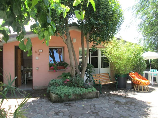 for animal lovers only; Cosy holiday home in Italy