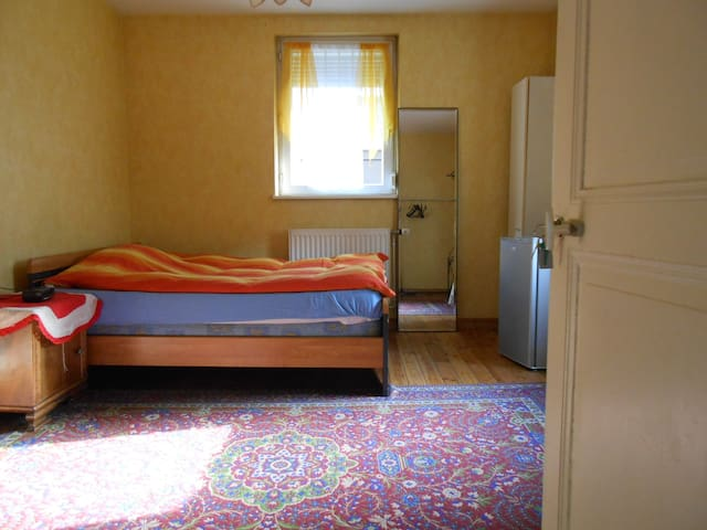 Nice and equipped bedroom - Strasbourg - House