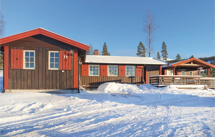 Holiday cottage with 3 bedrooms on 100m² in Ljørdalen