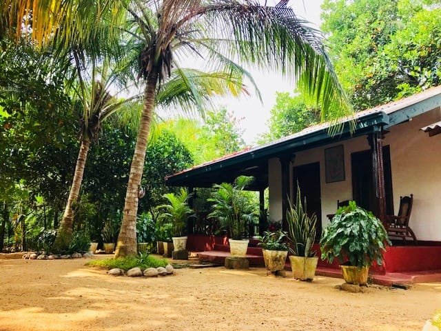Nice and quiet homestay in a botanical garden