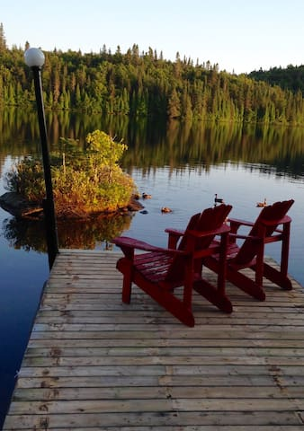 Notre petite cabane au Canada