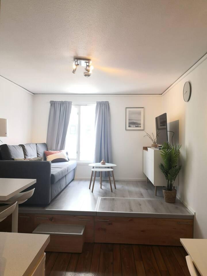 koselig leilighet midt i sentrum- kvadraturen
