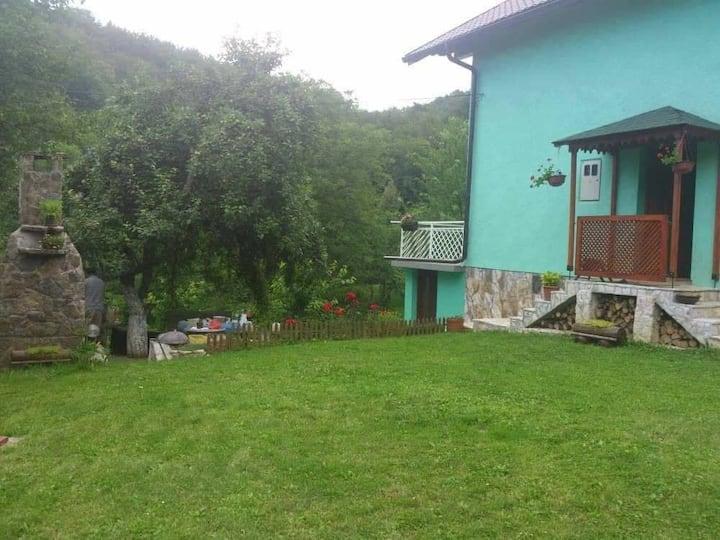 House Sarajevo