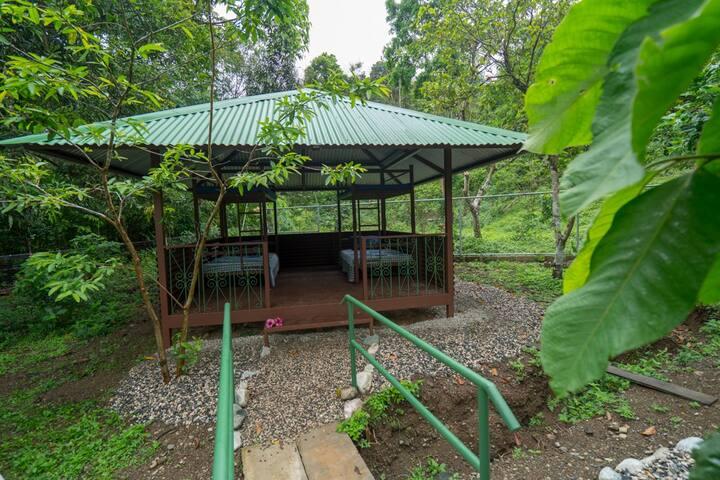 Bunkbeds for 4 in Botanical Garden - YEJOS