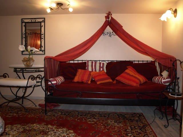 Appartement Coquelicot dans la vieille ville Thann - Thann - Apartemen