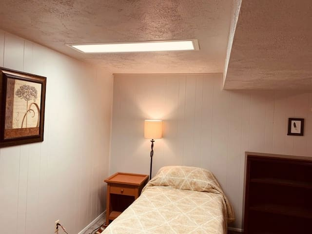 Our recently remodeled basement with one shared bathroom and fire place.