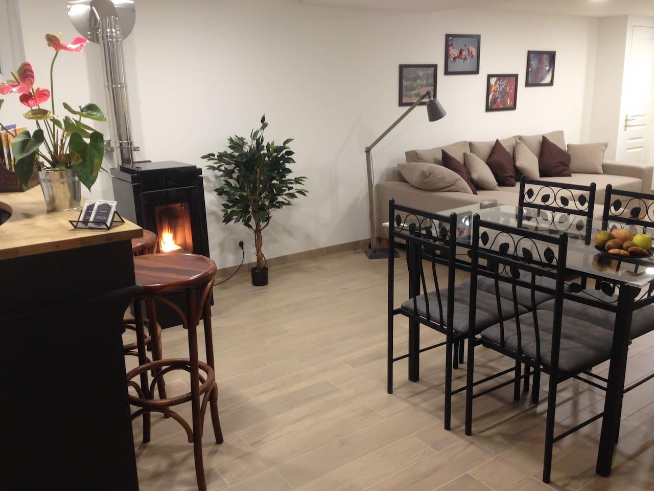 Le salon, votre espace privilégié (TV en face du canapé)
