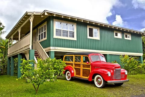 Beautiful, Airy, Bright, minutes walk/block to Hanalei Bay! TVNC#1352