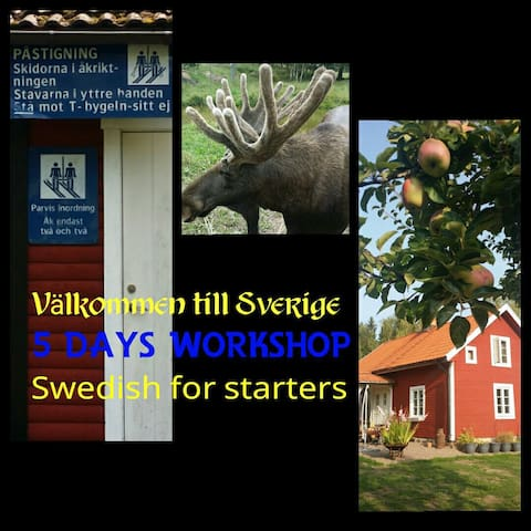 Book 6 nights and a 5 days swedish course includes. Please don't hesitate if you have any questions, you can always send me a email. Welcome!