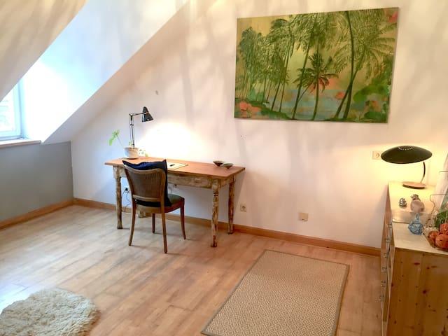 Schickes 20qm Zimmer in schönem Altbau