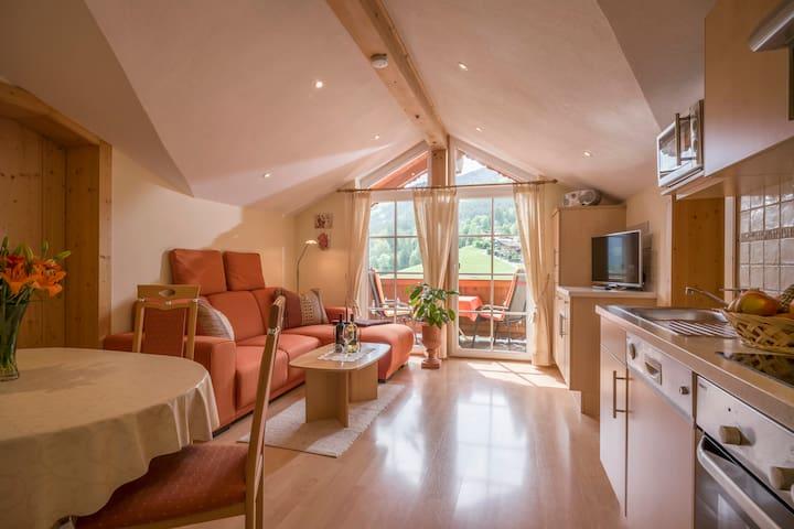 Appartement im Skigebiet Wilder Kaiser-Brixental - Brixen im Thale - Leilighet