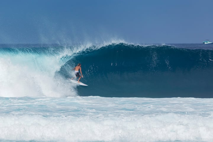Find the best waves in the Bay