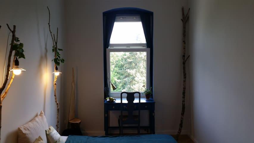 Eco Pan's Labyrinth Room