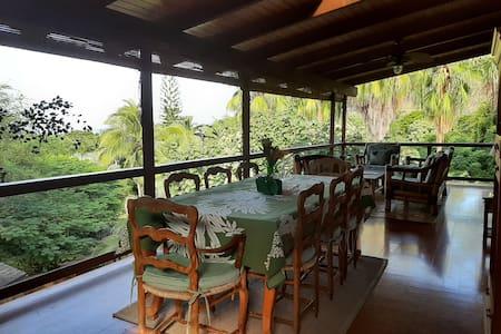 Tropical Penthouse, ocean view, 1 block to beach