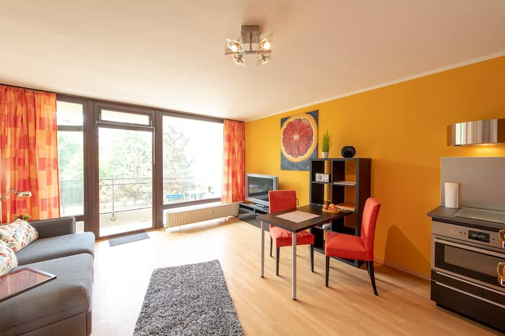 Cosy, nice and sunny appartment in Cologne City