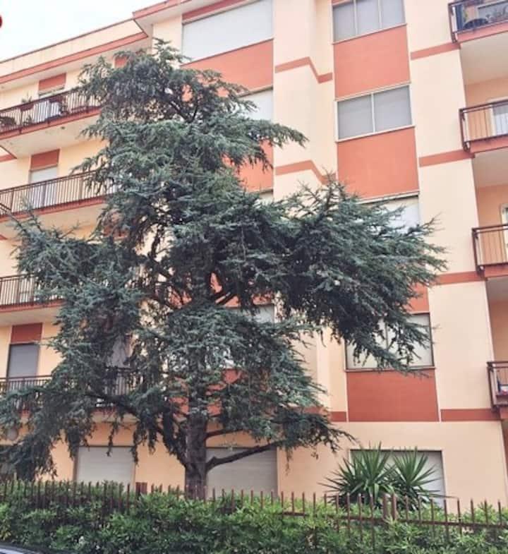 Appartamento a Squinzano-Lecce-