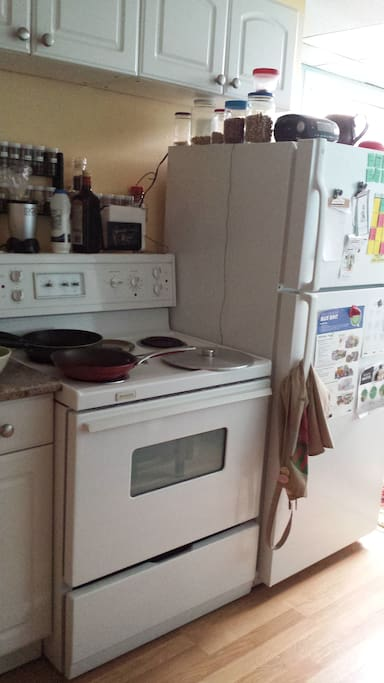 Kitchen includes large fridge, full stove+oven along with pots and pans