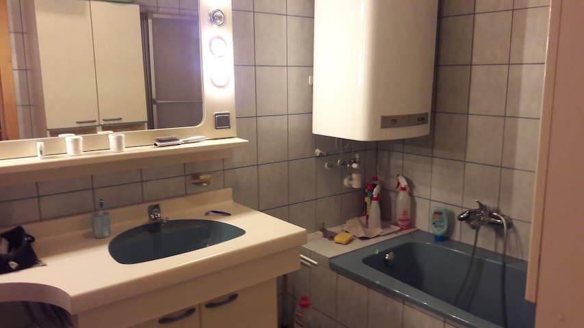 2 Zimmer mit Bad/Küche, Balkon - Graz - Cabin