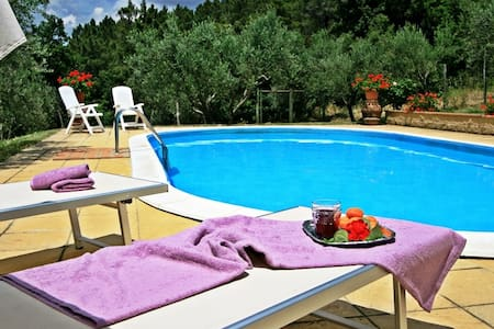 Typical Farmhouse with private pool - San Dalmazio