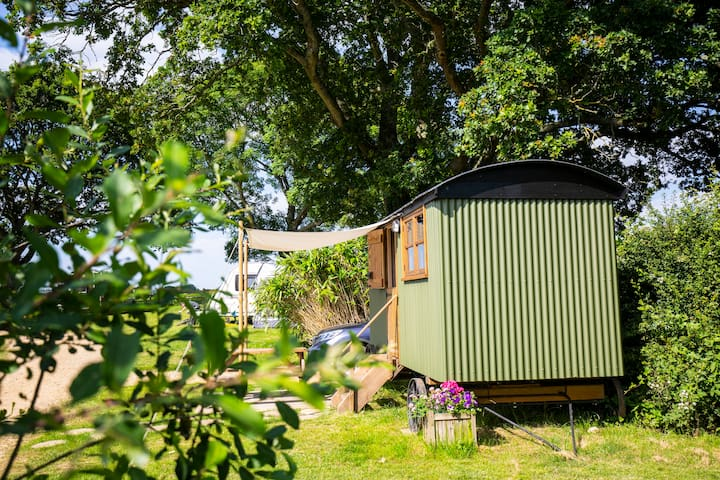 Glamping in The Drey