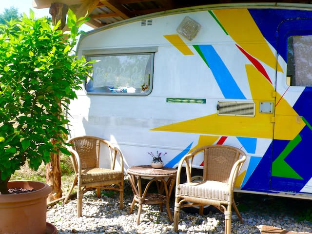 Cosy Camper on a Permaculture farm