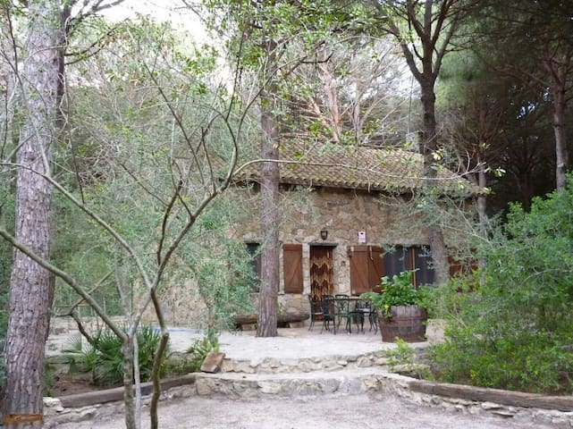 Casa de campo con encanto en plena naturaleza - Benalup-Casas Viejas - Huis